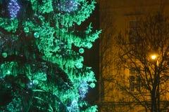 Árbol de navidad verde en Zagreb Imagen de archivo libre de regalías