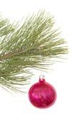 Árbol de navidad y bola Imagen de archivo libre de regalías