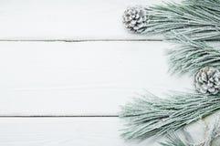 Árbol de navidad y cono de la rama Nevado en el fondo de madera blanco del vintage fotografía de archivo