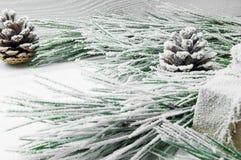 Árbol de navidad y cono de la rama Nevado en el fondo de madera blanco del vintage Foto de archivo libre de regalías