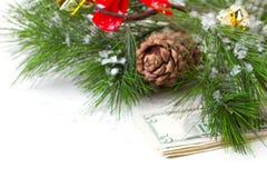 Árbol de navidad y dinero aislados Imagen de archivo libre de regalías