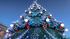Árbol de navidad y timelapse de la iluminación del día de fiesta Noche Vieja almacen de metraje de vídeo