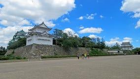 Árbol de nuez moscada moscada del castillo de Nagoya en Japón imagenes de archivo