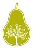 Árbol de pera en pera Foto de archivo
