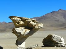 Árbol de Piedra, Altiplano, Bolivia. Altiplano - high altitude plateau in the Andes on the border of Bolivia, Chile and Argentina. On the Altiplano many stock photos