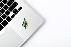Árbol de pino del Año Nuevo que pone en el ordenador portátil Espacio para su texto Fotos de archivo