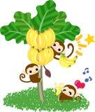 Árbol de plátano bonito de los monos Imagen de archivo libre de regalías
