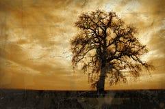 Árbol de roble del invierno de Grunge Fotos de archivo