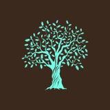 Árbol de roble verde Fotos de archivo libres de regalías