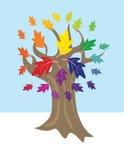 Árbol de rueda de color Fotografía de archivo libre de regalías