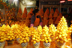 Árbol decorativo chino de Mammosum de la solanácea del Año Nuevo Fotografía de archivo
