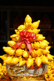 Árbol decorativo chino de Mammosum de la solanácea del Año Nuevo Imágenes de archivo libres de regalías
