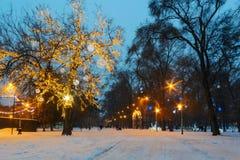 Árbol del Año Nuevo con la iluminación iluminada por la tarde Fotografía de archivo libre de regalías