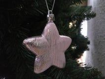 Árbol del Año Nuevo de la Navidad Imagen de archivo libre de regalías