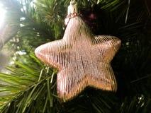 Árbol del Año Nuevo de la Navidad Fotografía de archivo