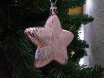 Árbol del Año Nuevo de la Navidad Fotos de archivo