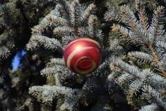 Árbol del Año Nuevo de las decoraciones Malla y juguetes, bolas y otras decoraciones en el árbol de navidad de la Navidad que se  Imagenes de archivo