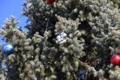 Árbol del Año Nuevo de las decoraciones Malla y juguetes, bolas y otras decoraciones en el árbol de navidad de la Navidad que se  Foto de archivo