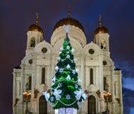 Árbol del Año Nuevo delante de la catedral de Cristo el salvador MOSCÚ RUSIA Tiro azul de la hora de la mañana Imagen de archivo libre de regalías