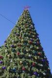 Árbol del Año Nuevo el día soleado Foto de archivo libre de regalías