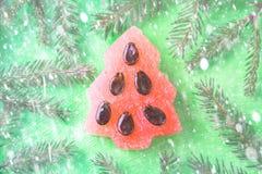 Árbol del Año Nuevo hecho de la sandía con las semillas La Navidad del Año Nuevo Foto de archivo libre de regalías
