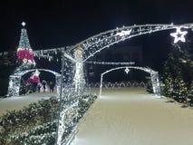 Árbol del Año Nuevo y de los christmass foto de archivo libre de regalías