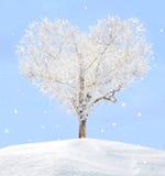 Árbol del amor Imágenes de archivo libres de regalías