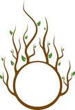Árbol del círculo Imagen de archivo libre de regalías