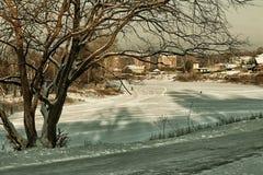 Árbol del callejón del invierno de la ciudad Imagenes de archivo