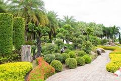 Árbol del camino y del enano de la caminata en el jardín. Fotos de archivo