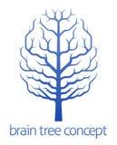 Árbol del cerebro del concepto del conocimiento Fotografía de archivo libre de regalías