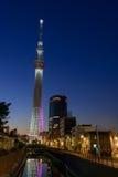 Árbol del cielo de Tokio en la oscuridad Imagen de archivo