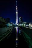 Árbol del cielo de Tokio y su reflexión Imágenes de archivo libres de regalías