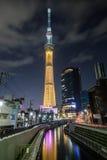 Árbol del cielo en Tokio Imagen de archivo