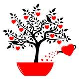Árbol del corazón en pote Fotografía de archivo