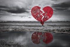 Árbol del corazón quebrado. Blanco y negro Fotos de archivo