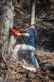 árbol del corte del hombre abajo con la motosierra Fotografía de archivo