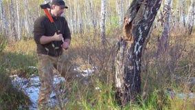 Árbol del corte del leñador con el hacha en el bosque almacen de video