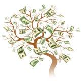Árbol del dólar Fotos de archivo libres de regalías