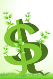 Árbol del dólar Foto de archivo libre de regalías