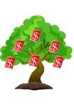 Árbol del dólar Imágenes de archivo libres de regalías