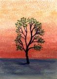 Árbol del desierto de la pintura al óleo Fotos de archivo libres de regalías