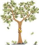 Árbol del dinero con los dólares Fotos de archivo libres de regalías