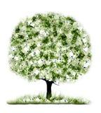 Árbol del dinero en el fondo blanco stock de ilustración