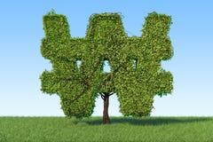 Árbol del dinero en la forma de la muestra ganada en la hierba verde contra b Fotografía de archivo