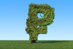 Árbol del dinero en la forma de la muestra de la rublo en la hierba verde contra Imágenes de archivo libres de regalías