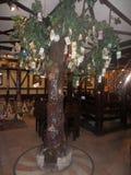 Árbol del dinero en Saratov Fotos de archivo