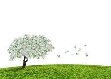 Árbol del efectivo Imágenes de archivo libres de regalías