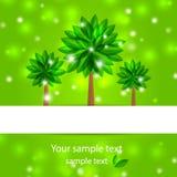 Árbol de la primavera del fondo con los pétalos verdes Foto de archivo libre de regalías
