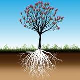 Árbol del flor stock de ilustración